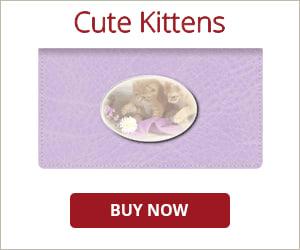 Cute Kittens Checkbook Cover