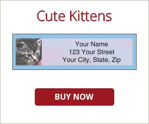 Cute Kittens Address Labels